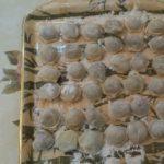 Рецепт домашних пельменей.Тесто на пельмени