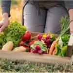 Полезные продукты, диета